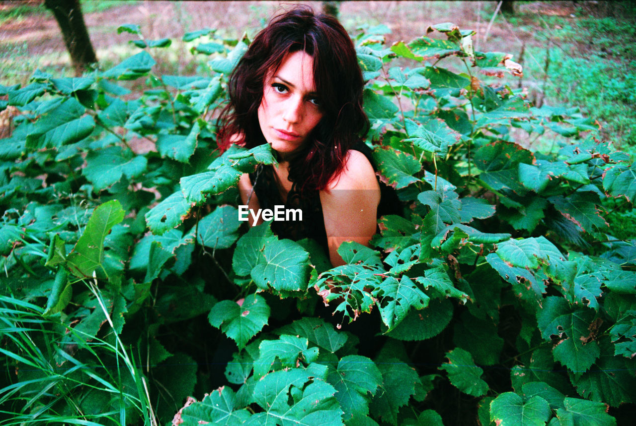 Portrait of young woman sitting amidst plants