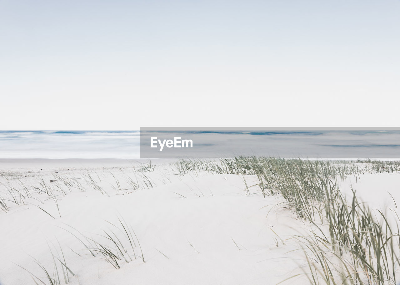 sky, beauty in nature, tranquility, tranquil scene, land, scenics - nature, grass, water, beach, nature, plant, copy space, sand, no people, day, landscape, sea, clear sky, non-urban scene, marram grass, horizon over water, outdoors