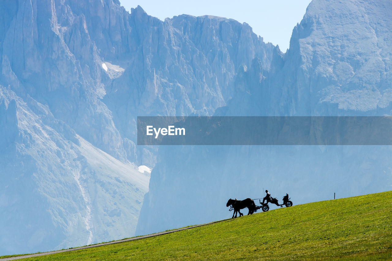 Man With Horses On Mountain Against Sky