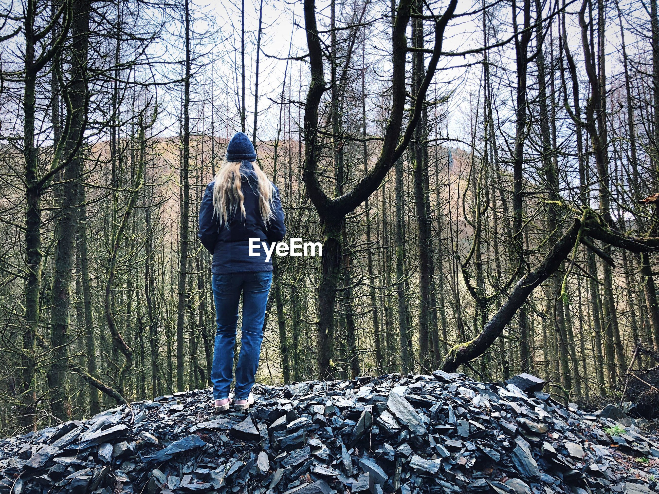 REAR VIEW OF MAN STANDING ON LAND IN FOREST