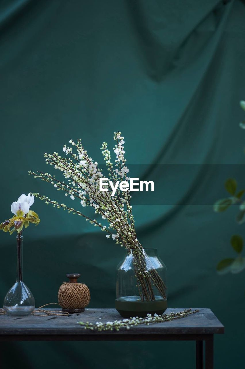 plant, flower, flowering plant, table, nature, decoration, no people, vase, beauty in nature, growth, fragility, indoors, freshness, vulnerability, still life, close-up, tree, day, green color, glass - material, flower head