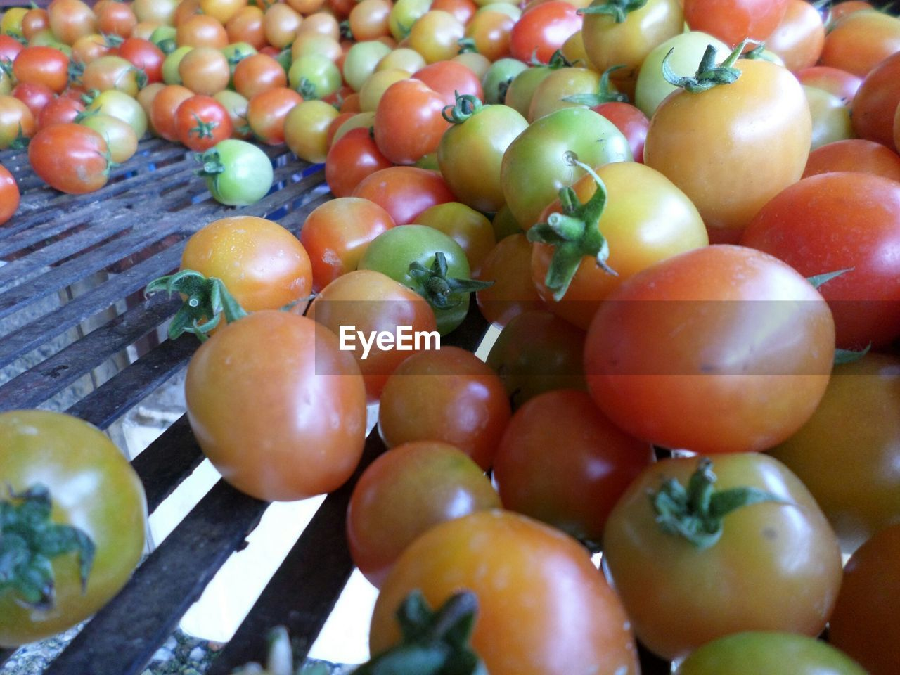 HIGH ANGLE VIEW OF FRESH TOMATOES