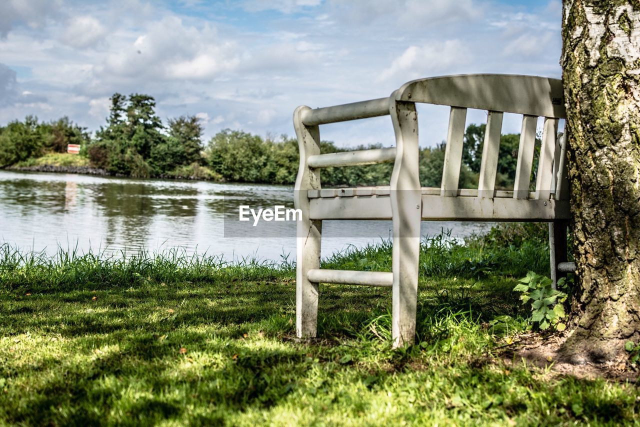Bench By Tree On Riverbank