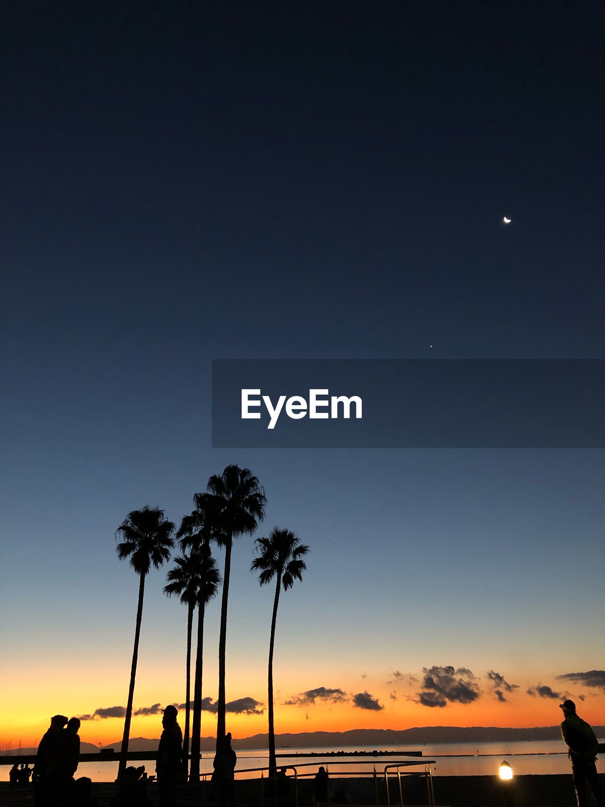SILHOUETTE PALM TREES AGAINST CLEAR SKY AT SUNSET