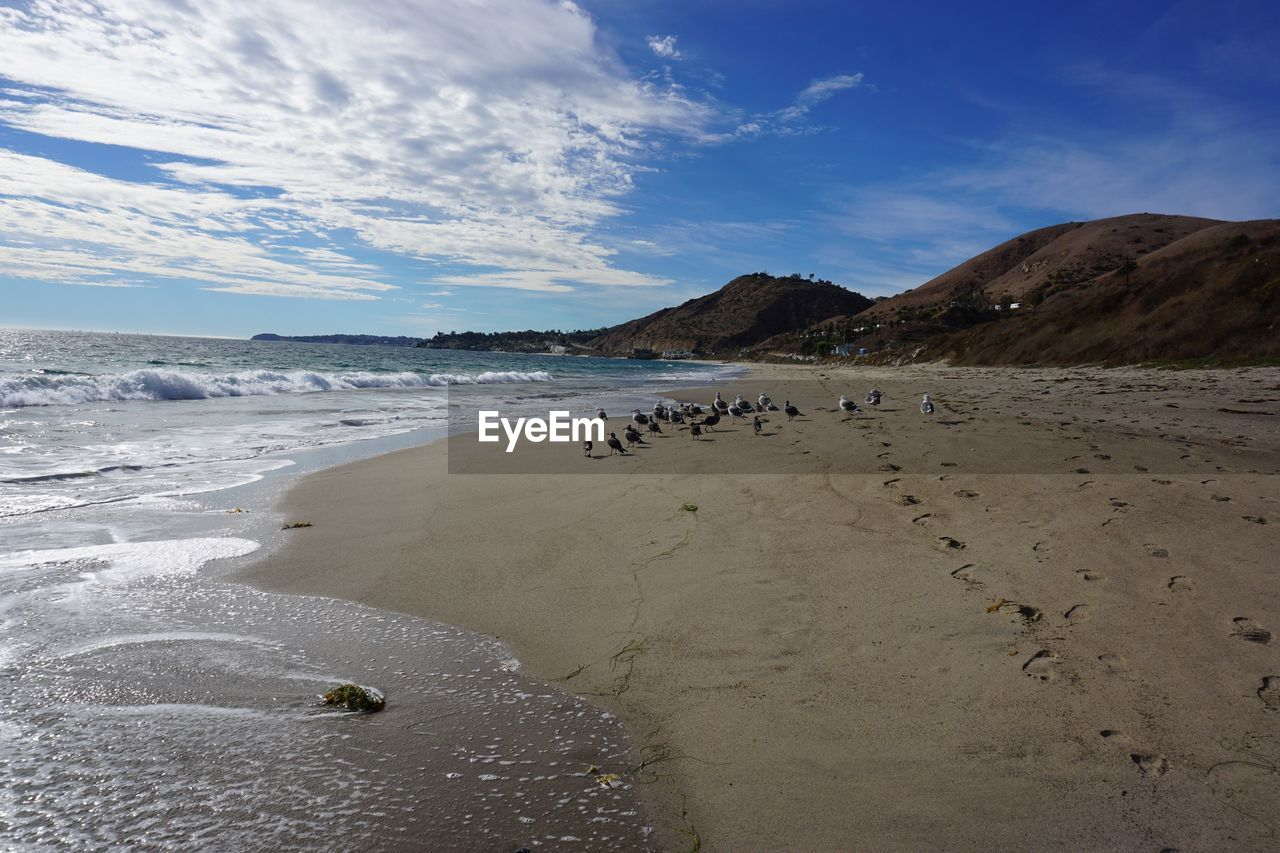 sky, beach, sand, nature, water, beauty in nature, scenics, cloud - sky, tranquility, sea, outdoors, day, no people, mammal