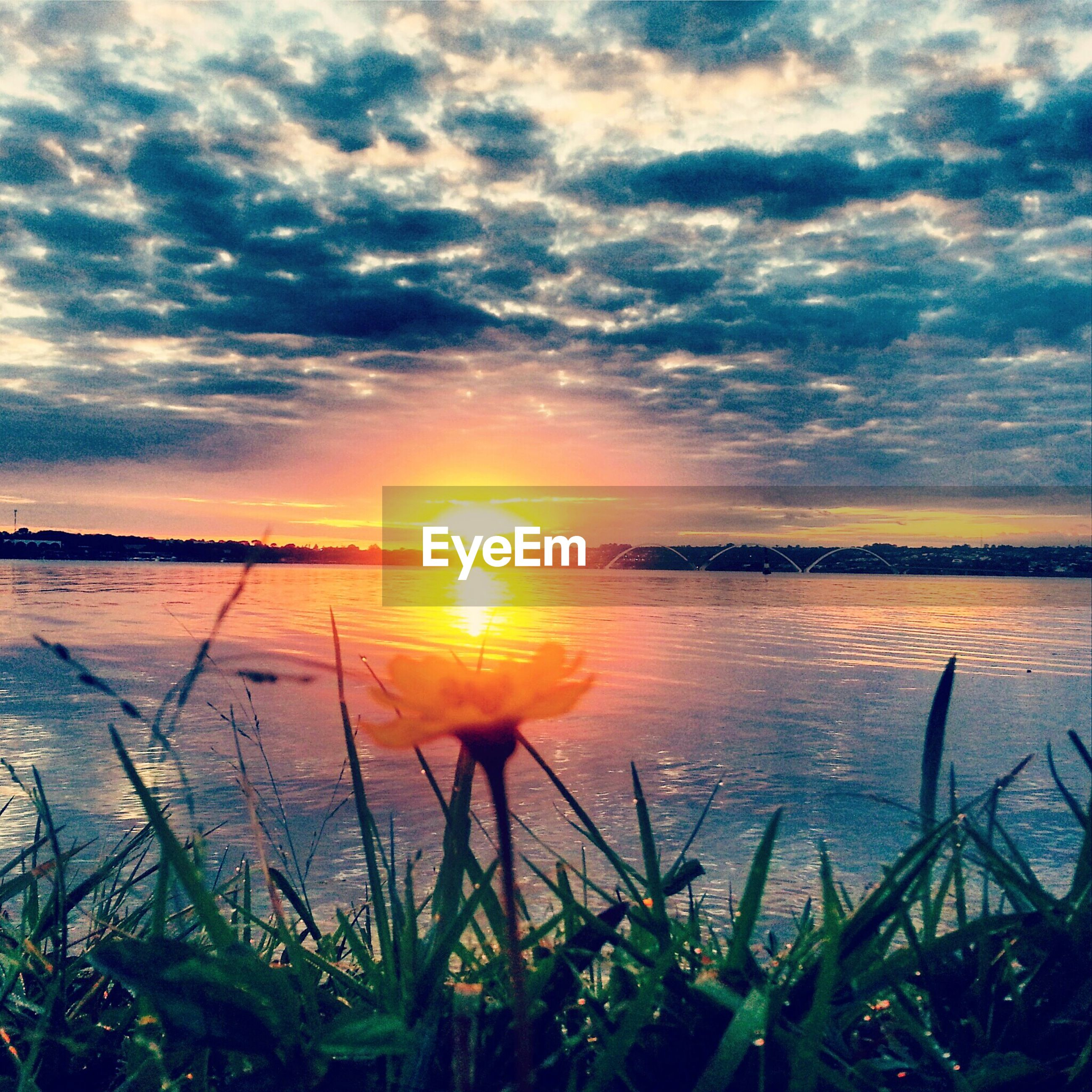 sunset, sky, sun, water, tranquil scene, scenics, tranquility, beauty in nature, cloud - sky, nature, reflection, sea, idyllic, cloud, plant, horizon over water, cloudy, sunlight, grass, orange color