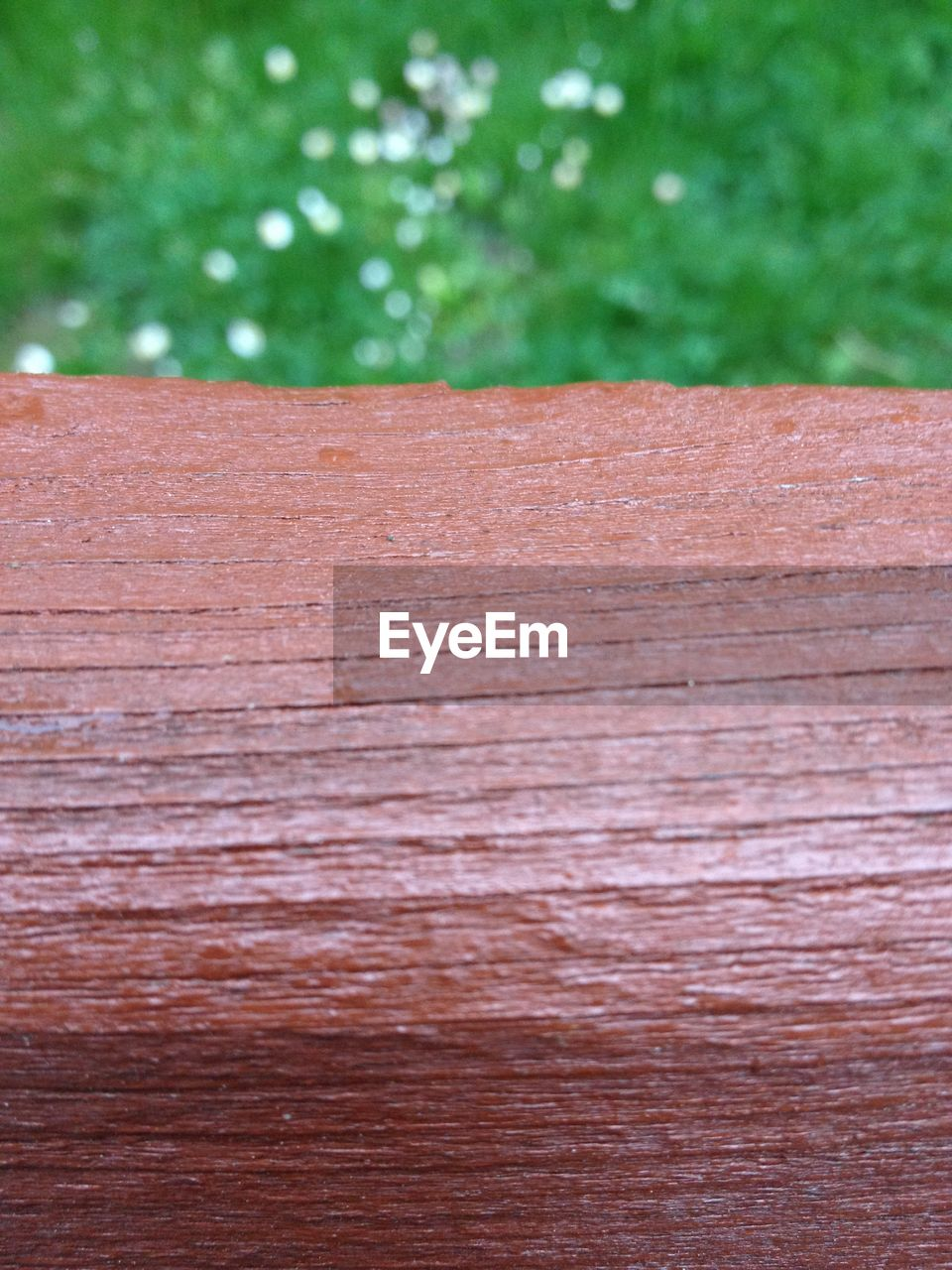 wood - material, tree, wood, close-up, no people, textured, day, brown, plant, pattern, outdoors, forest, nature, wood grain, focus on foreground, full frame, backgrounds, land, plank, cross section