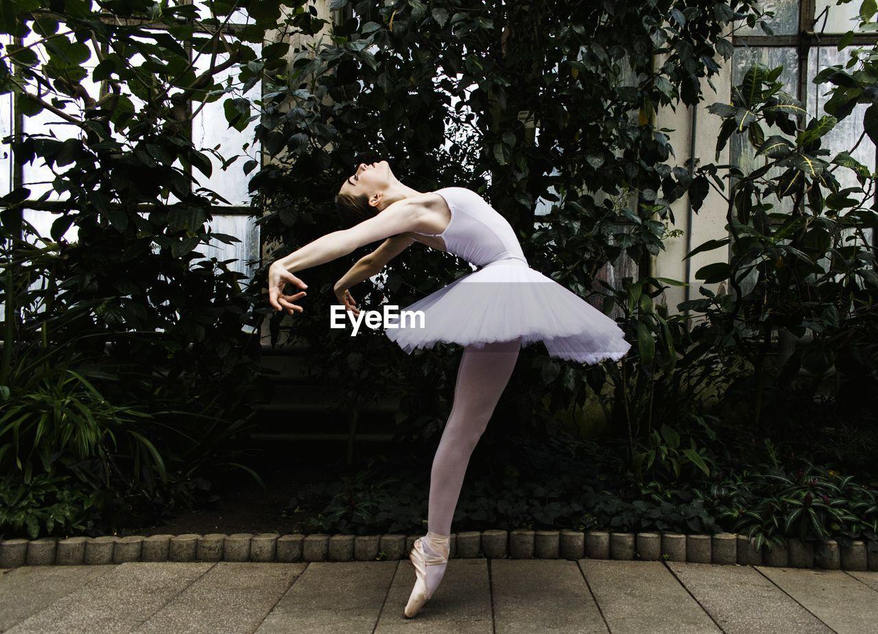 Ballet Dancer Dancing Against Palm Trees