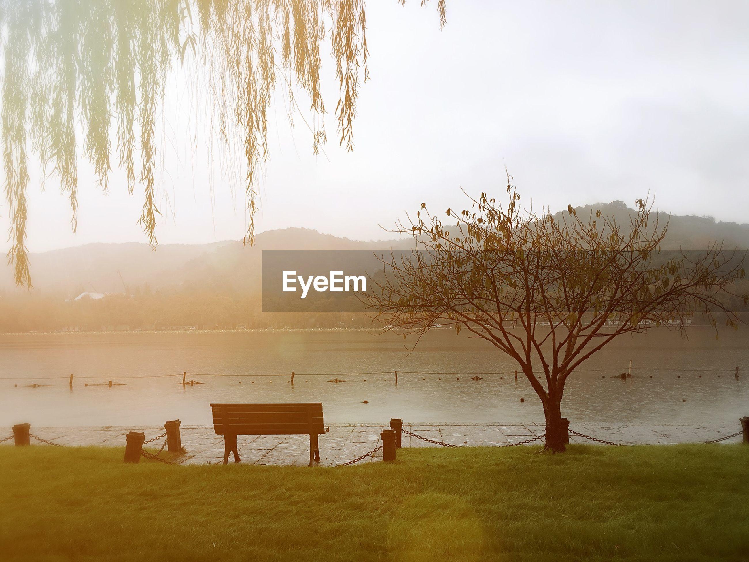 tranquil scene, tranquility, water, scenics, tree, beauty in nature, bare tree, lake, nature, sun, sky, grass, branch, landscape, sunset, mountain, idyllic, sunlight, non-urban scene, lakeshore