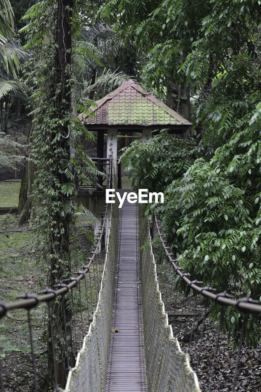 Hanging bridge in the garden vertical view