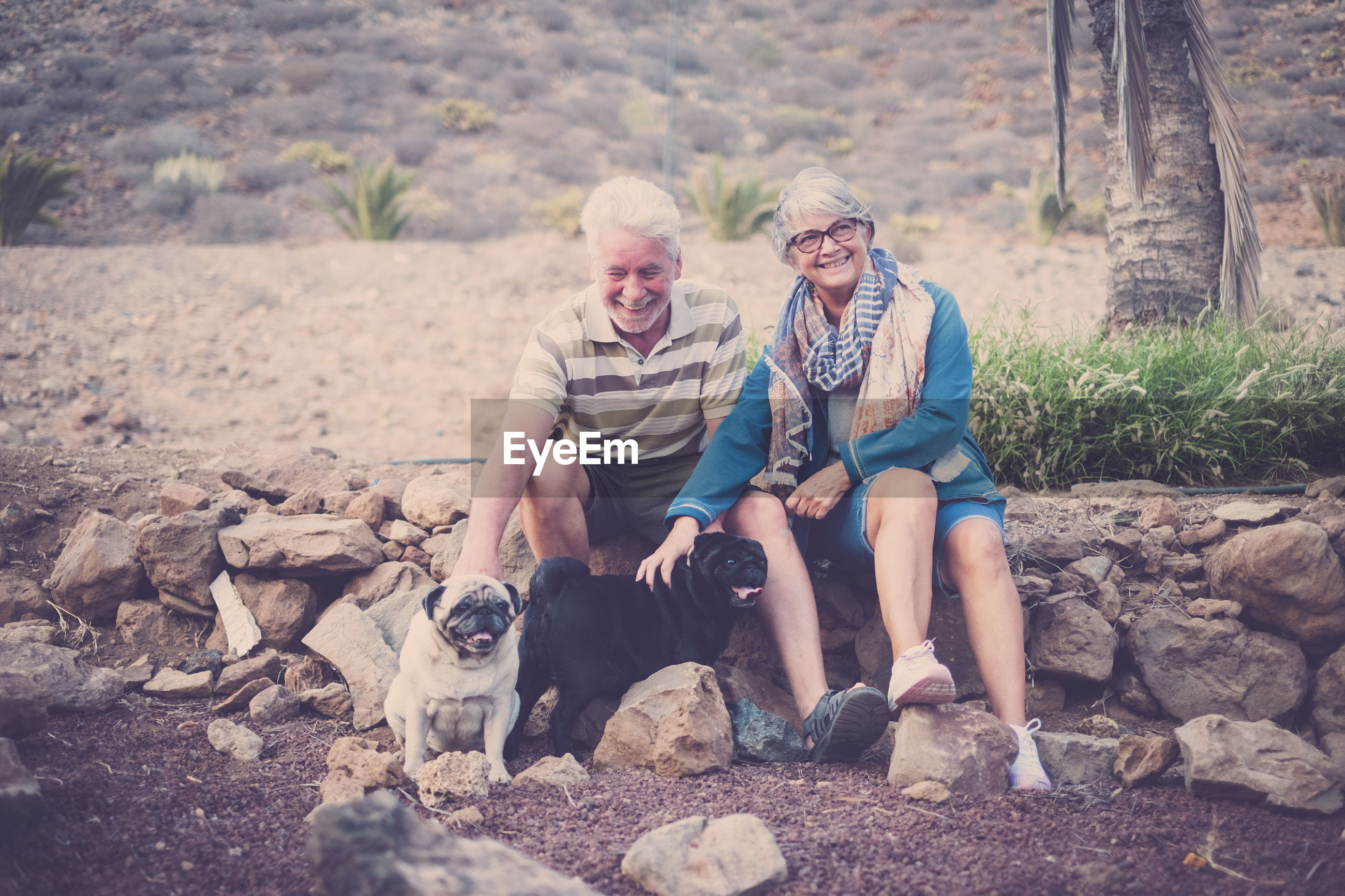 Senior couple with dogs sitting on rocks