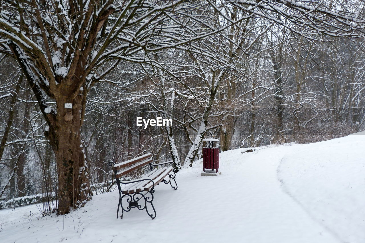 winter, snow, cold temperature, bare tree, weather, tree, branch, nature, tranquility, frozen, beauty in nature, no people, snowing, landscape, outdoors, scenics, day