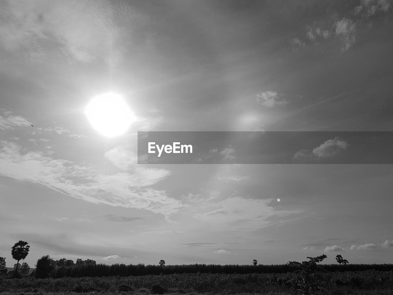 sun, field, sky, scenics, tranquil scene, sunbeam, landscape, beauty in nature, cloud - sky, nature, tranquility, outdoors, no people, day, tree, sunlight, rural scene, growth, grass