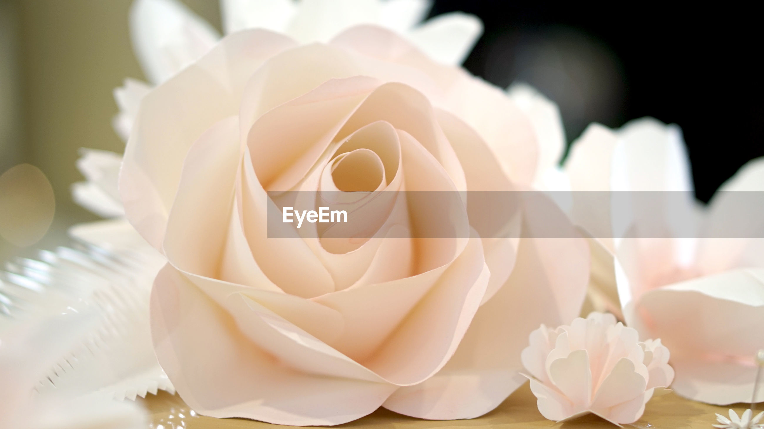 Close-up of rose bouquet wall wedding or valentine's day background