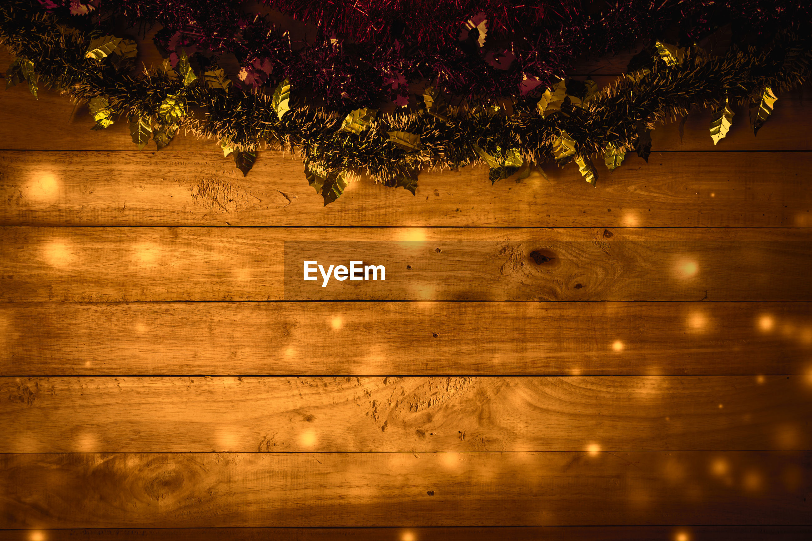 FULL FRAME SHOT OF WOODEN WALL WITH TREE
