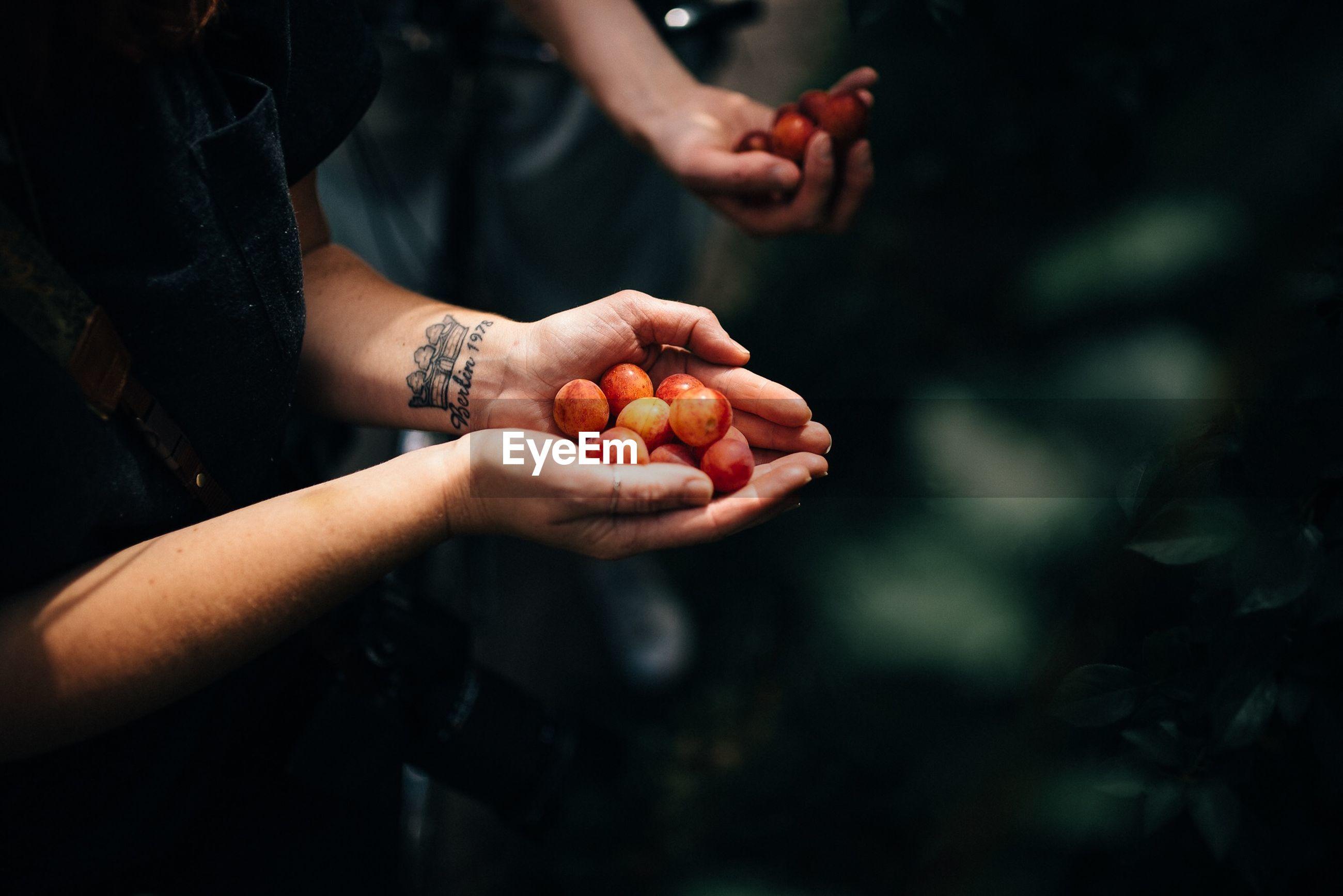 CROPPED IMAGE OF MAN HOLDING FRUIT