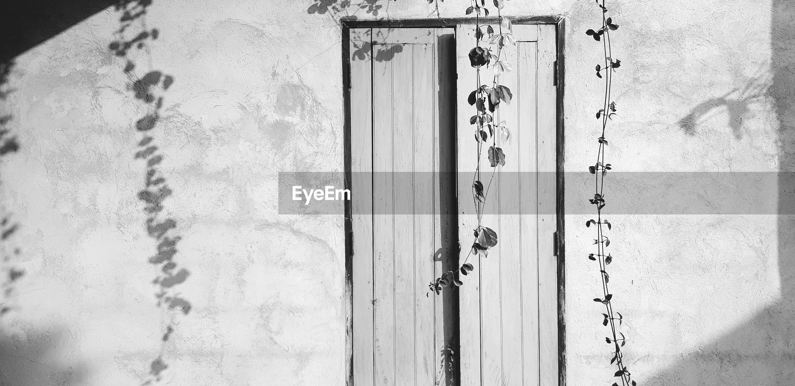 Close-up of closed door of building in black and white style