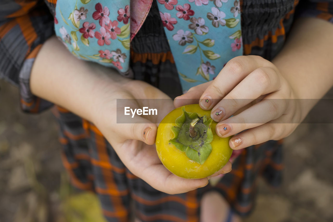 Midsection Of Woman Holding Persimmon