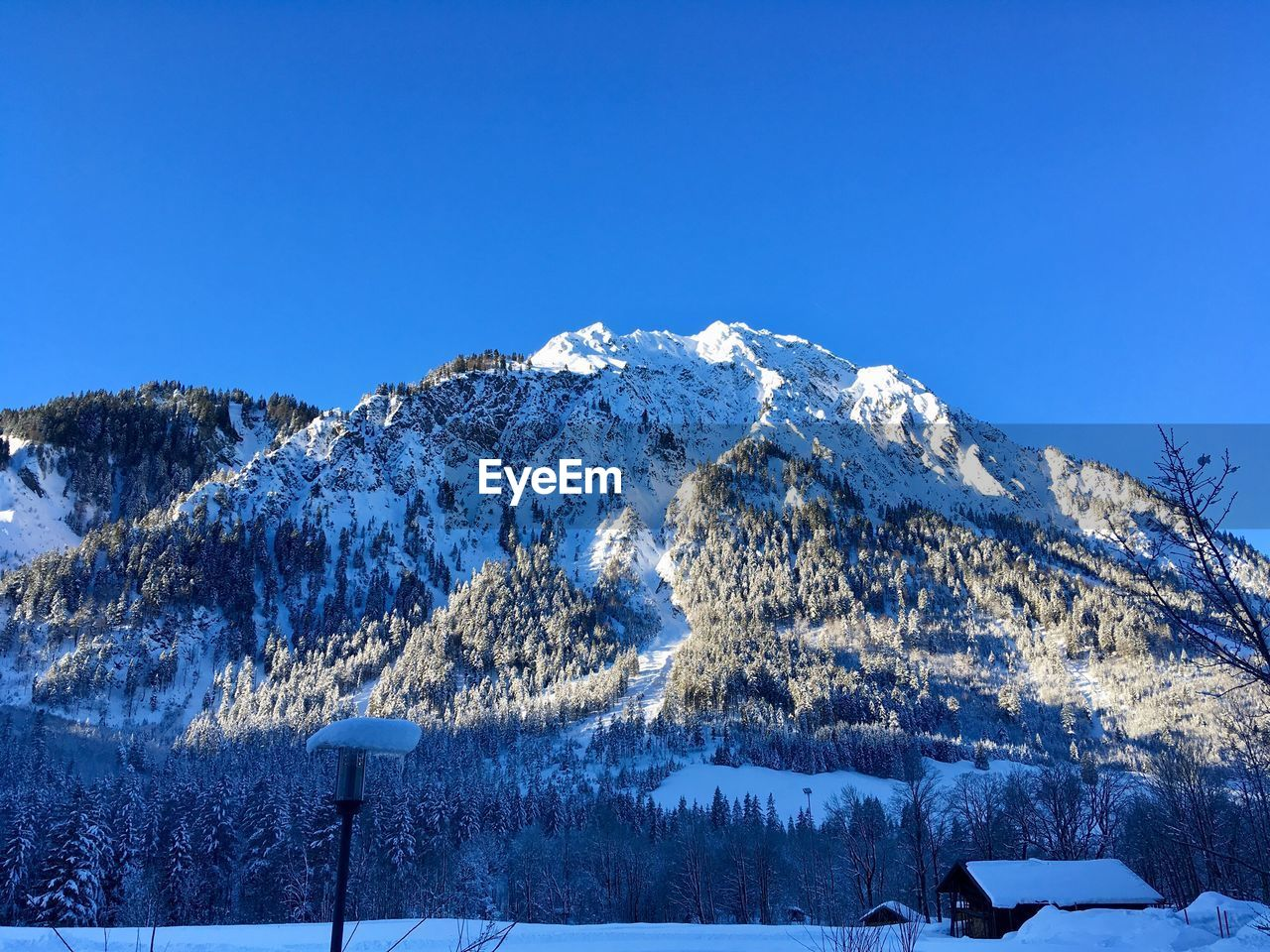 snow, winter, cold temperature, beauty in nature, sky, scenics - nature, tranquil scene, tranquility, mountain, blue, nature, clear sky, environment, no people, snowcapped mountain, copy space, white color, non-urban scene, tree, mountain range, mountain peak