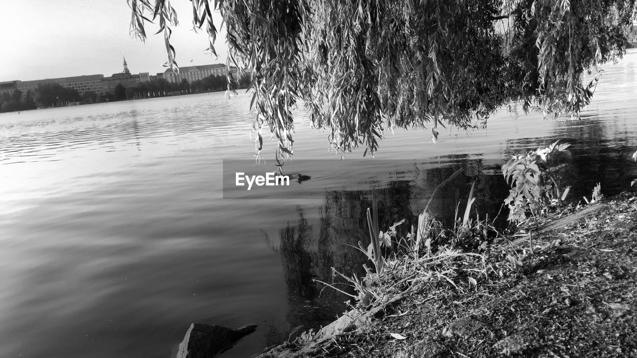water, tree, plant, nature, reflection, day, lake, no people, architecture, tranquility, outdoors, built structure, beauty in nature, building exterior, tranquil scene, land, waterfront, scenics - nature, flowing water, flowing