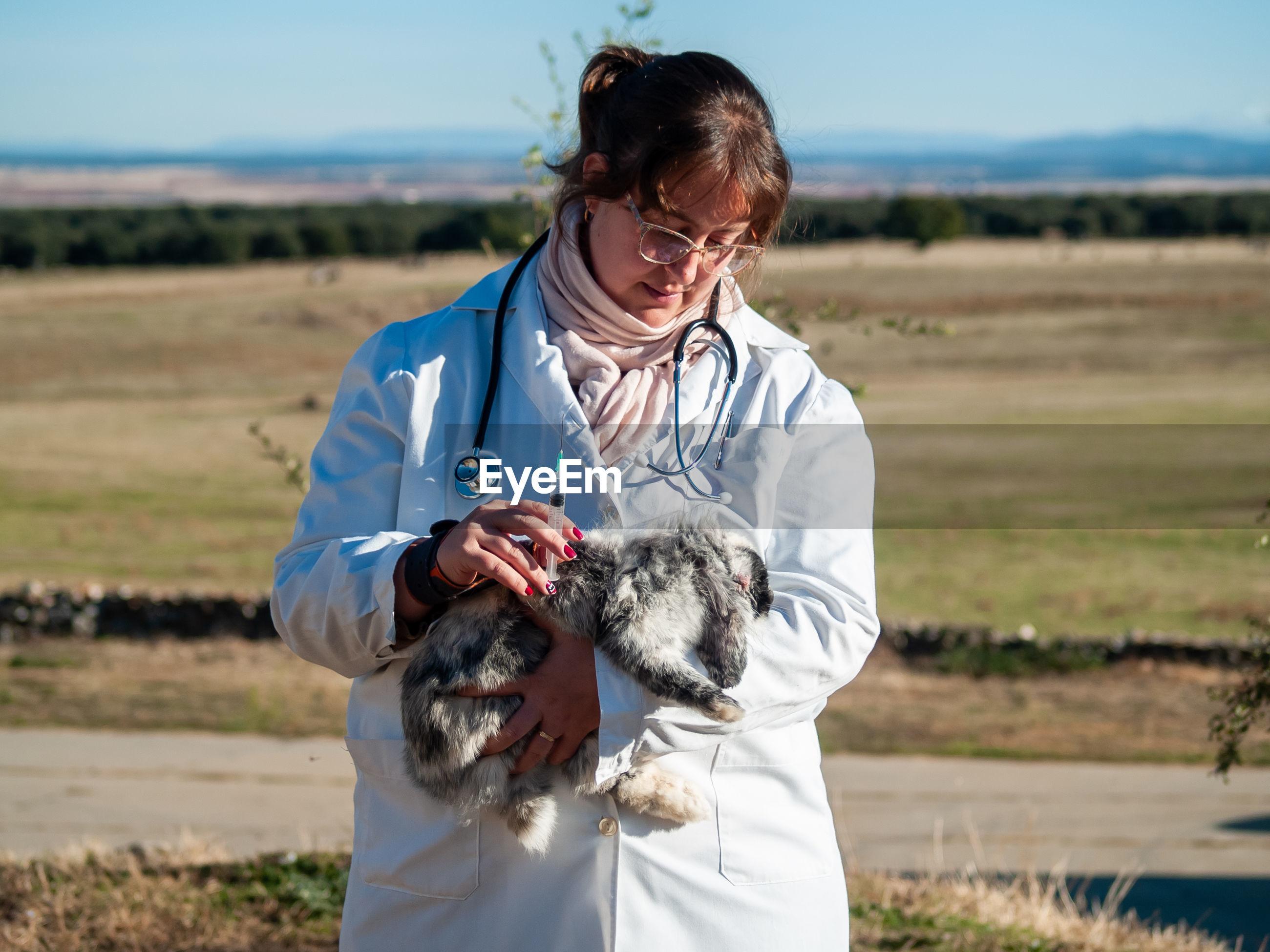 Doctor examining rabbit with stethoscope
