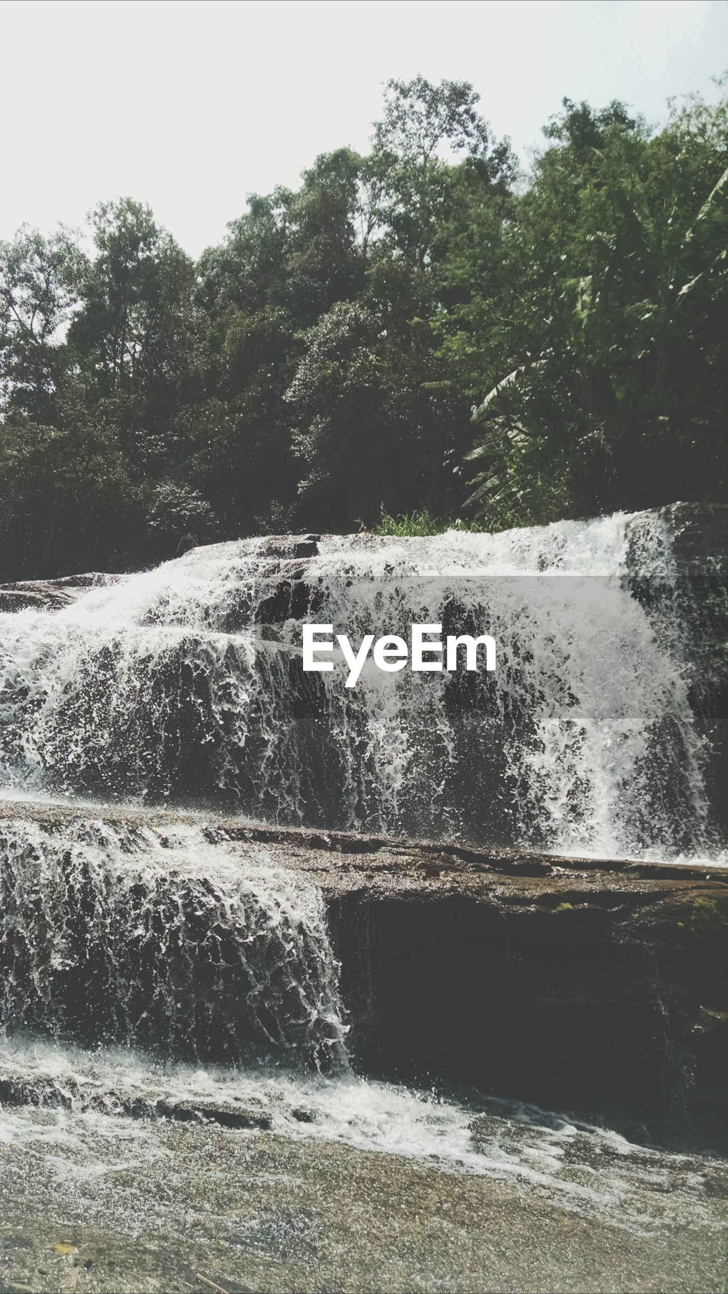 water, tree, motion, flowing water, nature, fountain, splashing, rock - object, beauty in nature, day, flowing, waterfall, tranquility, scenics, waterfront, growth, outdoors, no people, park - man made space, clear sky