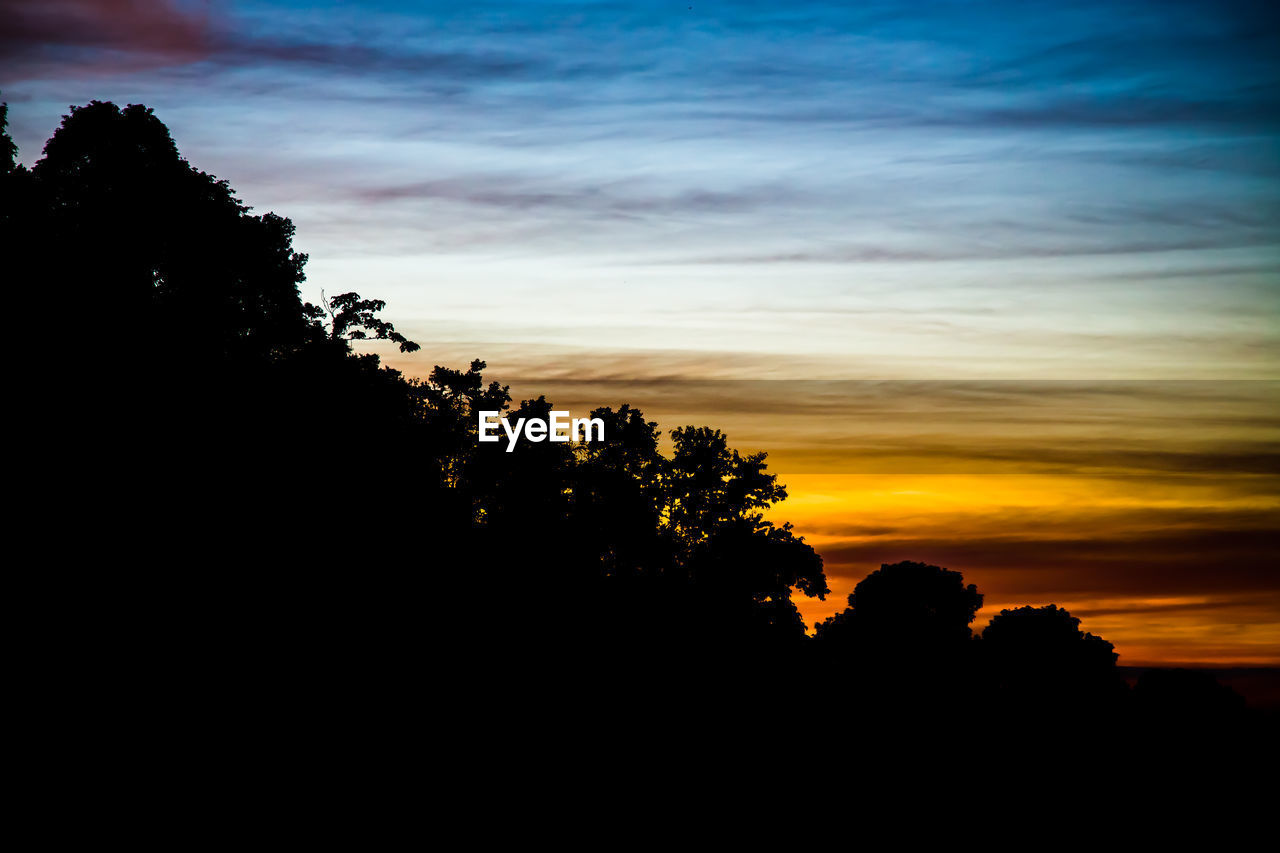 silhouette, sunset, tree, sky, nature, beauty in nature, scenics, tranquility, tranquil scene, no people, outdoors, growth