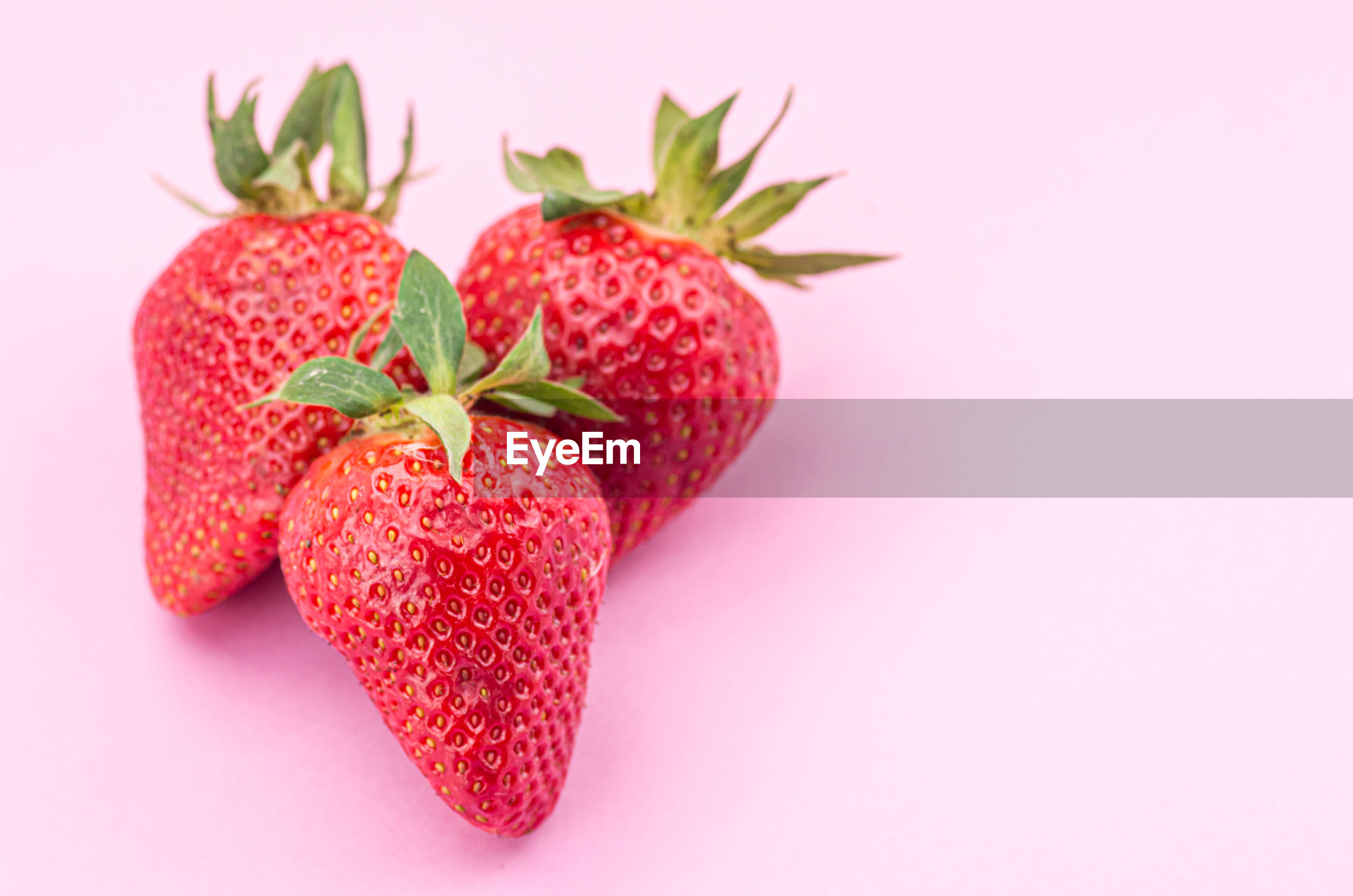 Fresh organic ripe strawberries on a pink surface close up
