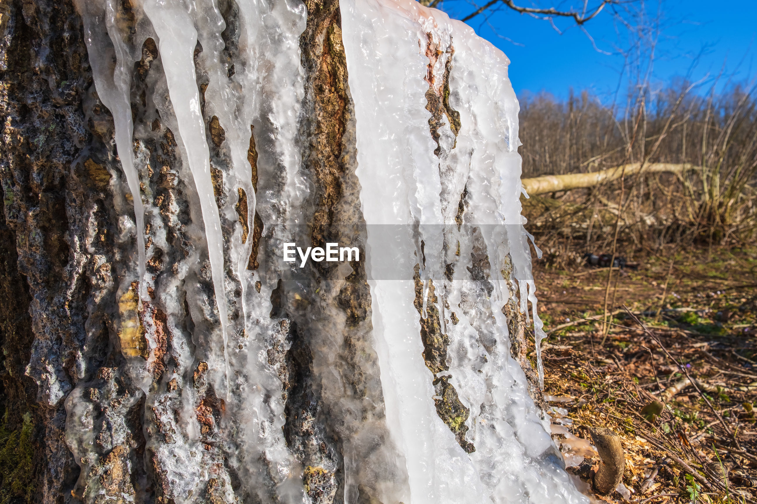 PANORAMIC SHOT OF ICICLES ON ROCK