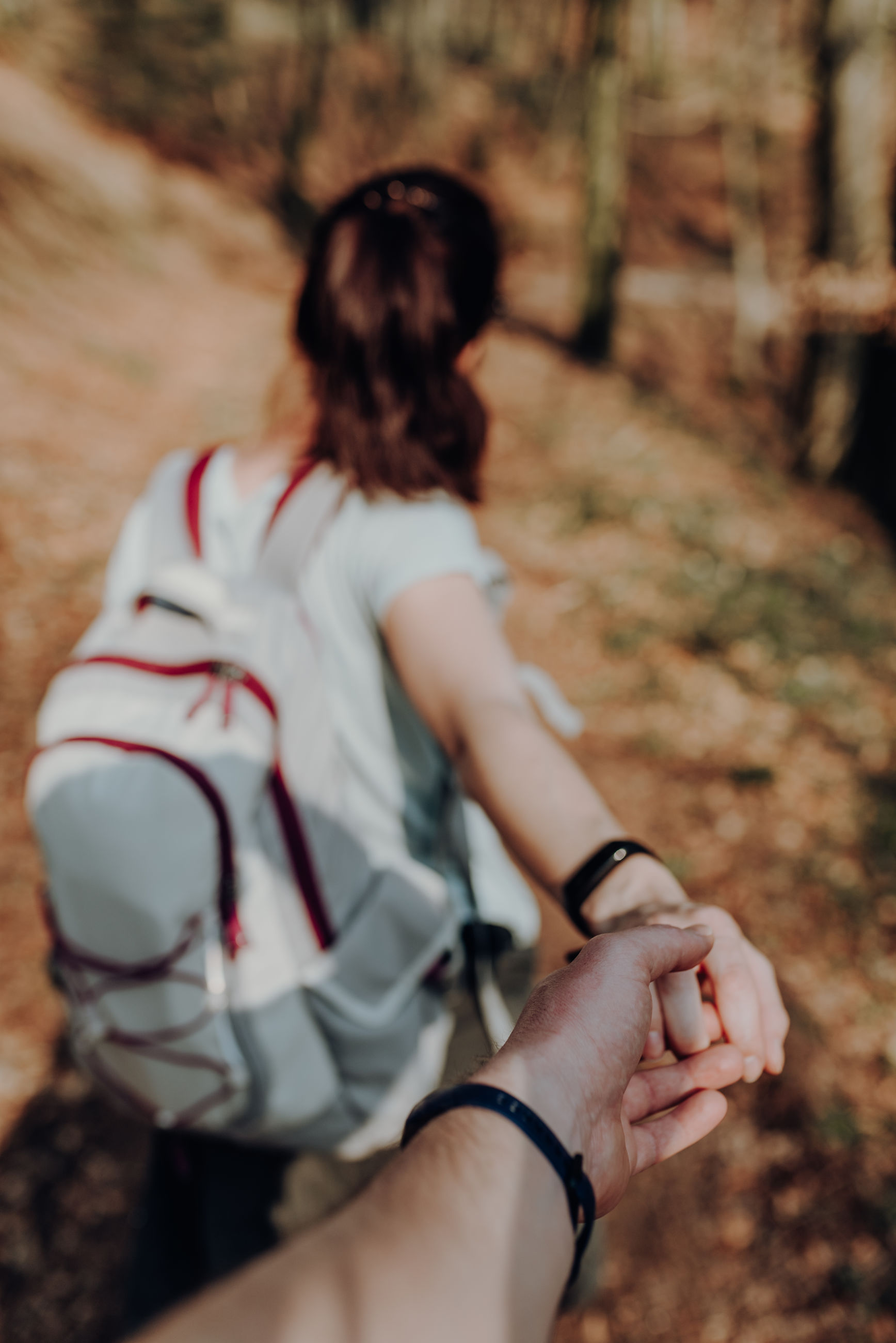 Couple holding hands while walking in forest