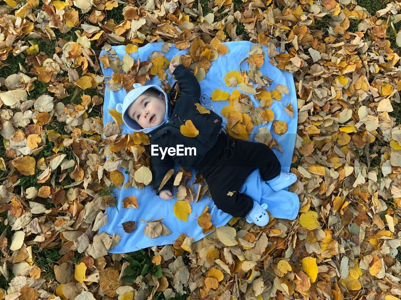 High angle view portrait of child during autumn