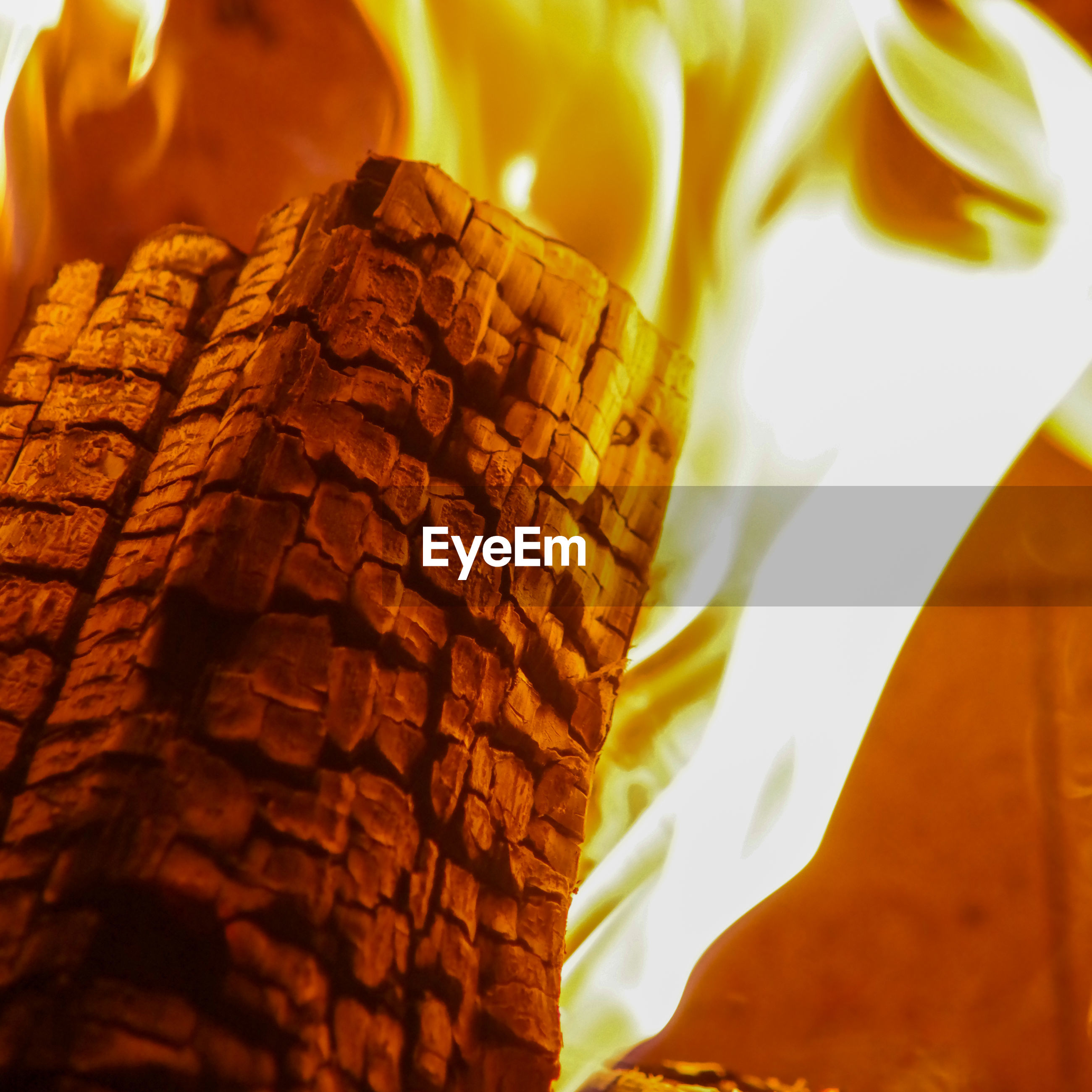 Close-up of burning log in fireplace with leaping flame