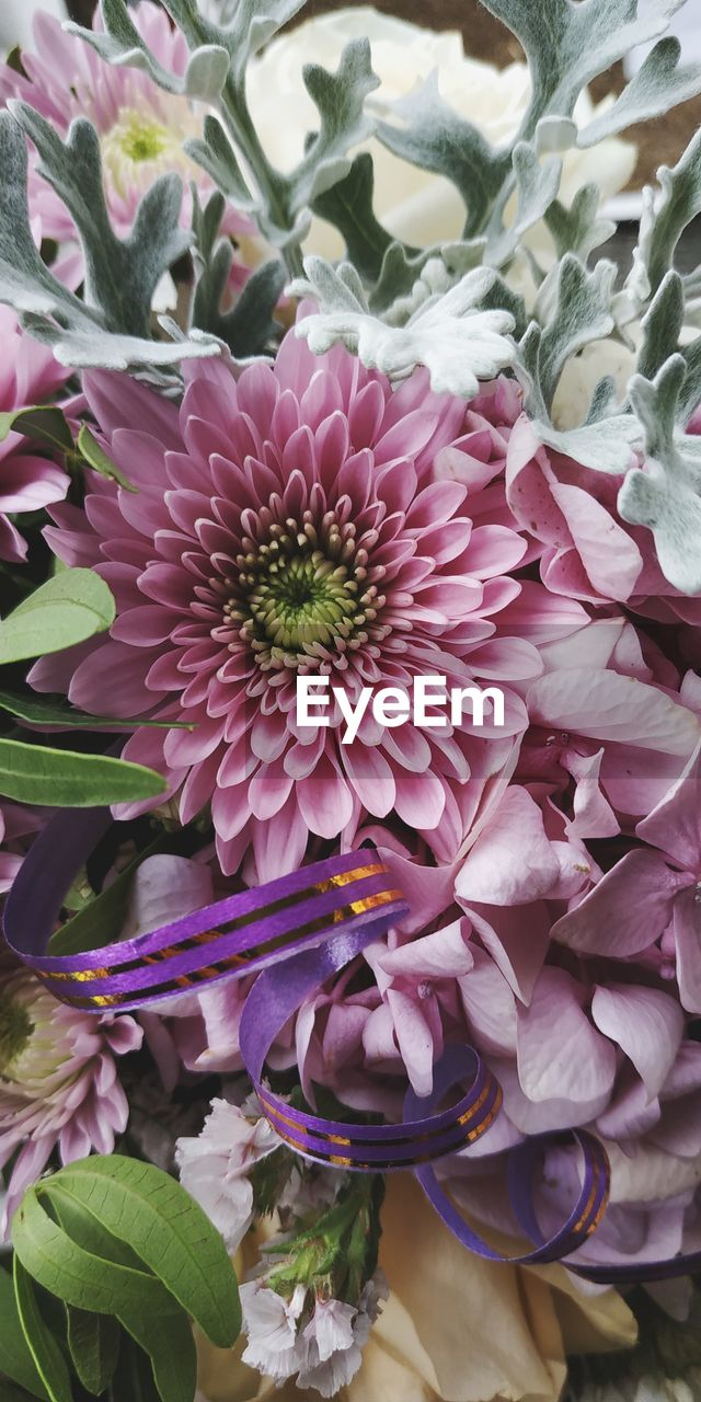 flower, flowering plant, plant, beauty in nature, petal, vulnerability, fragility, flower head, freshness, inflorescence, pink color, close-up, nature, growth, no people, purple, high angle view, leaf, day, plant part, flower arrangement, bouquet, bunch of flowers