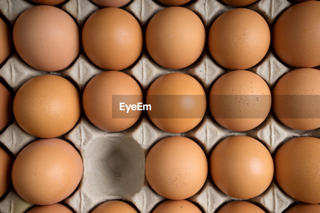 egg, food and drink, wellbeing, freshness, large group of objects, food, healthy eating, in a row, arrangement, egg carton, side by side, brown, full frame, no people, backgrounds, close-up, vulnerability, raw food, fragility, order, carton, egg yolk
