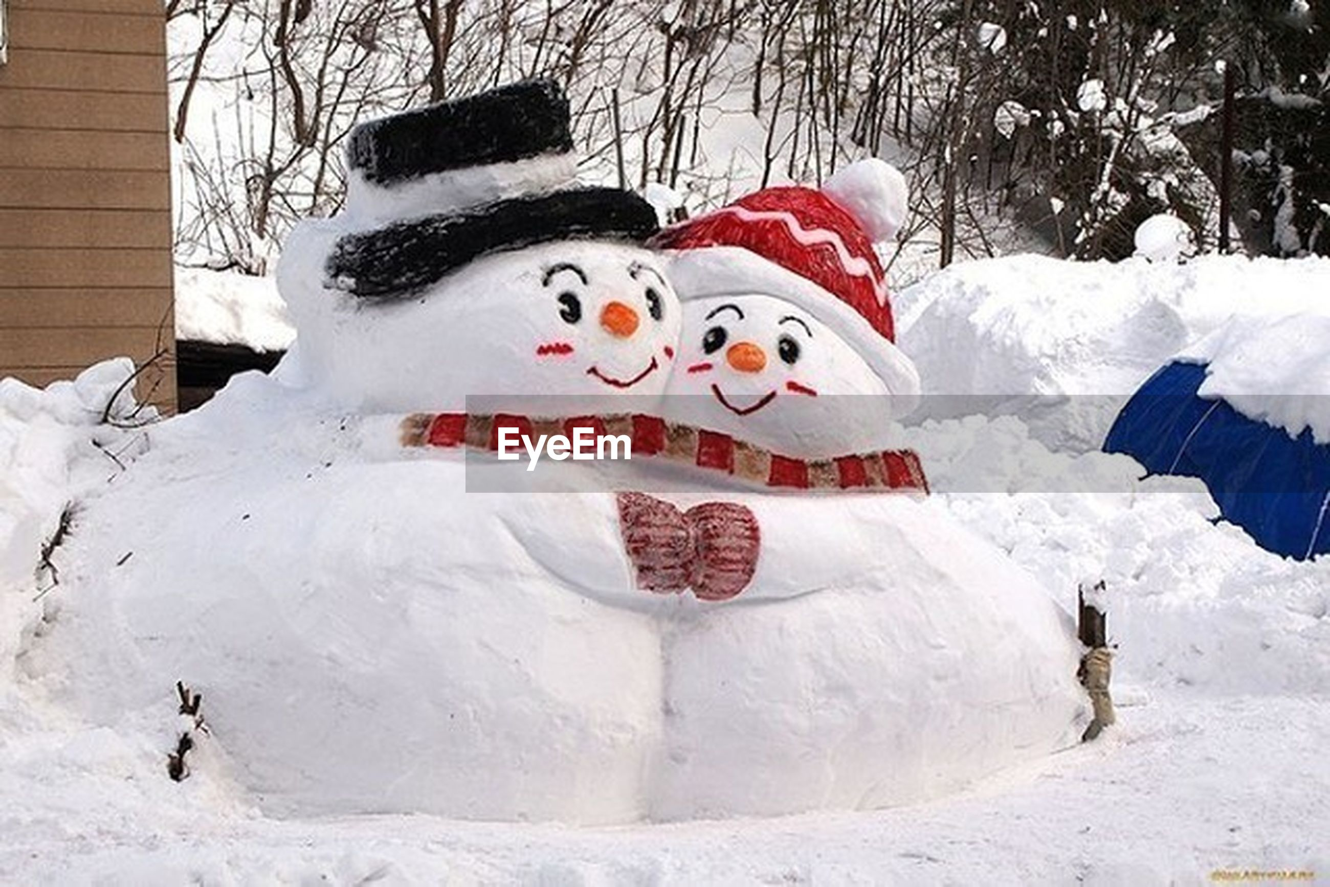 snow, outdoors, day, no people, anthropomorphic face, tree, clown