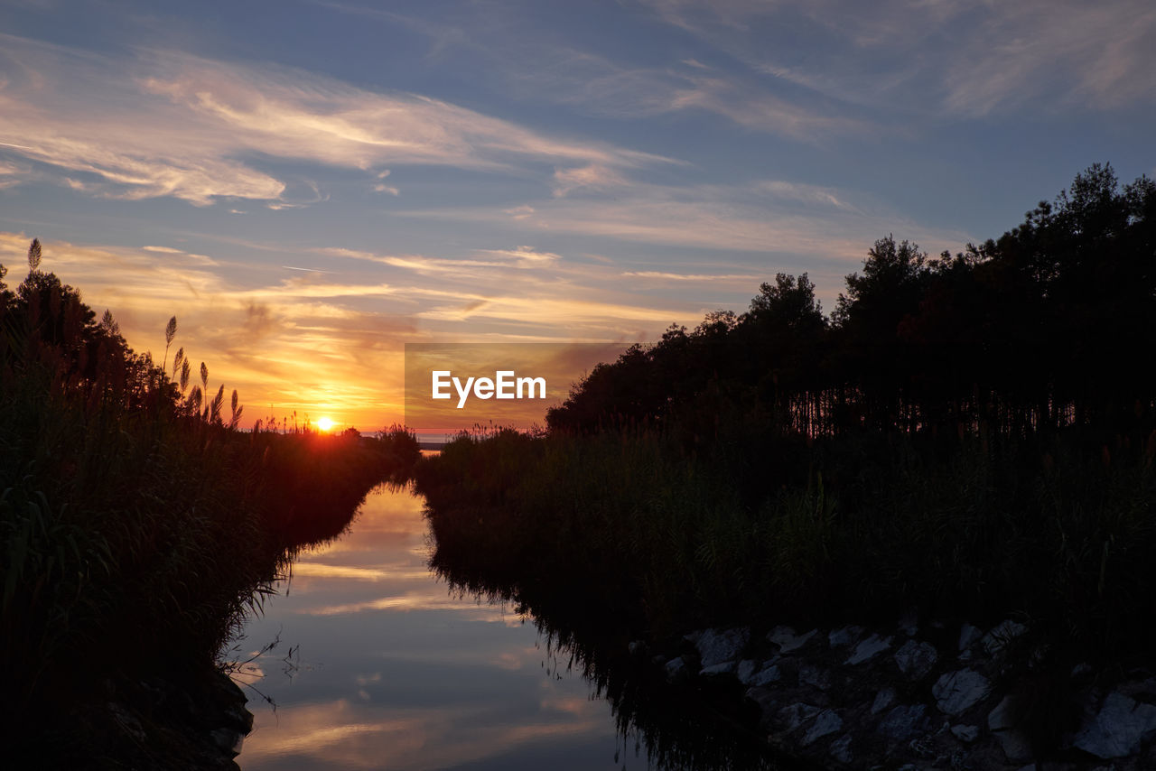 sunset, tree, tranquil scene, sky, scenics, nature, tranquility, beauty in nature, cloud - sky, water, no people, outdoors, day