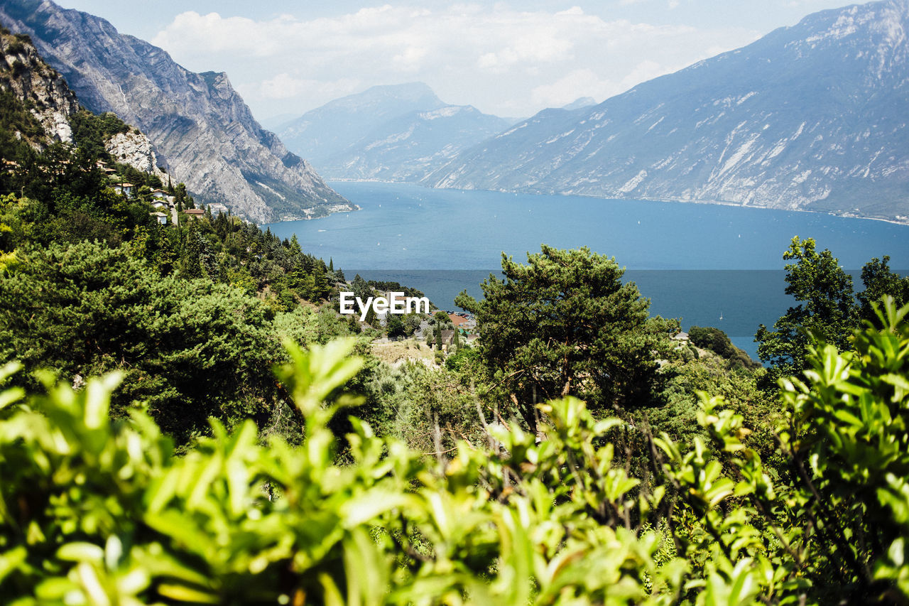 mountain, plant, beauty in nature, water, scenics - nature, tree, growth, nature, sky, green color, day, no people, mountain range, sea, focus on background, tranquility, tranquil scene, environment, outdoors, mountain peak