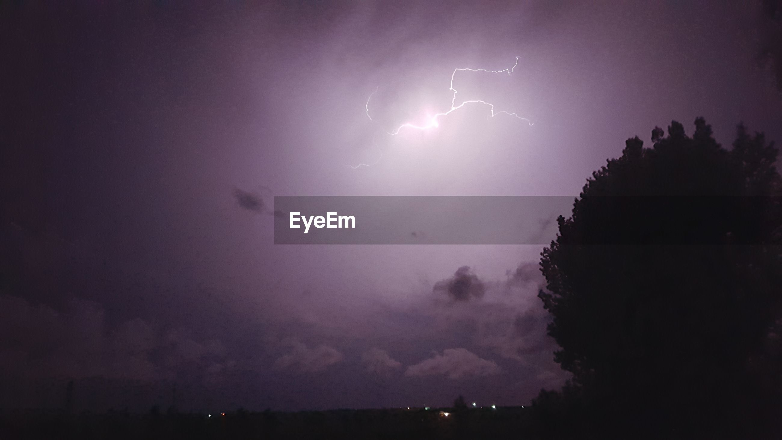 Low angle view of silhouette tree against purple cloudy sky with lightning