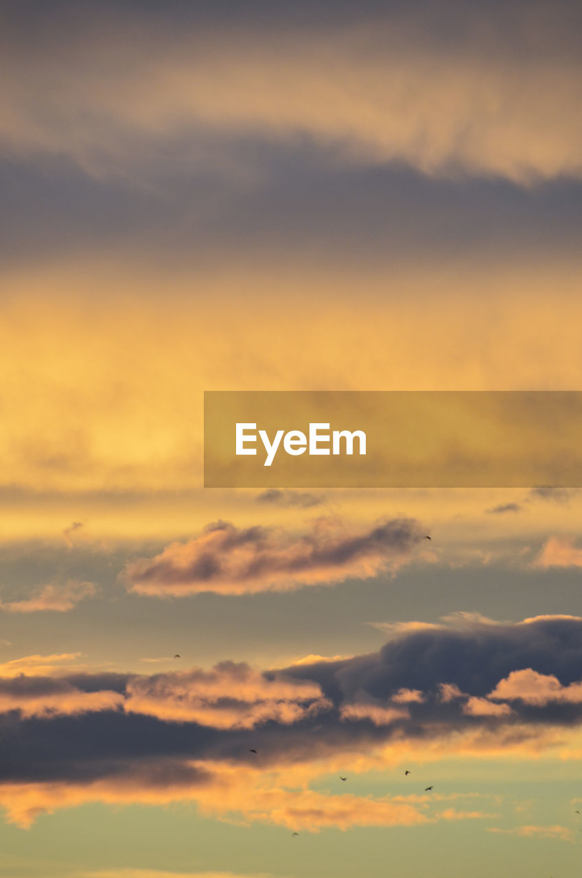 cloud - sky, sky, sunset, beauty in nature, orange color, scenics - nature, tranquility, tranquil scene, idyllic, nature, no people, outdoors, dramatic sky, backgrounds, cloudscape, low angle view, full frame, atmospheric mood, yellow, romantic sky, meteorology