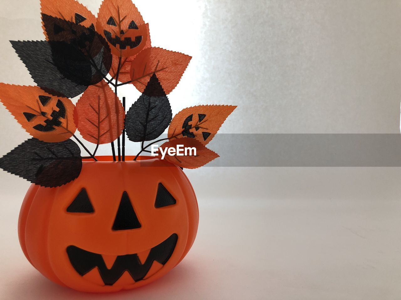 CLOSE-UP OF BUTTERFLY ON PUMPKIN