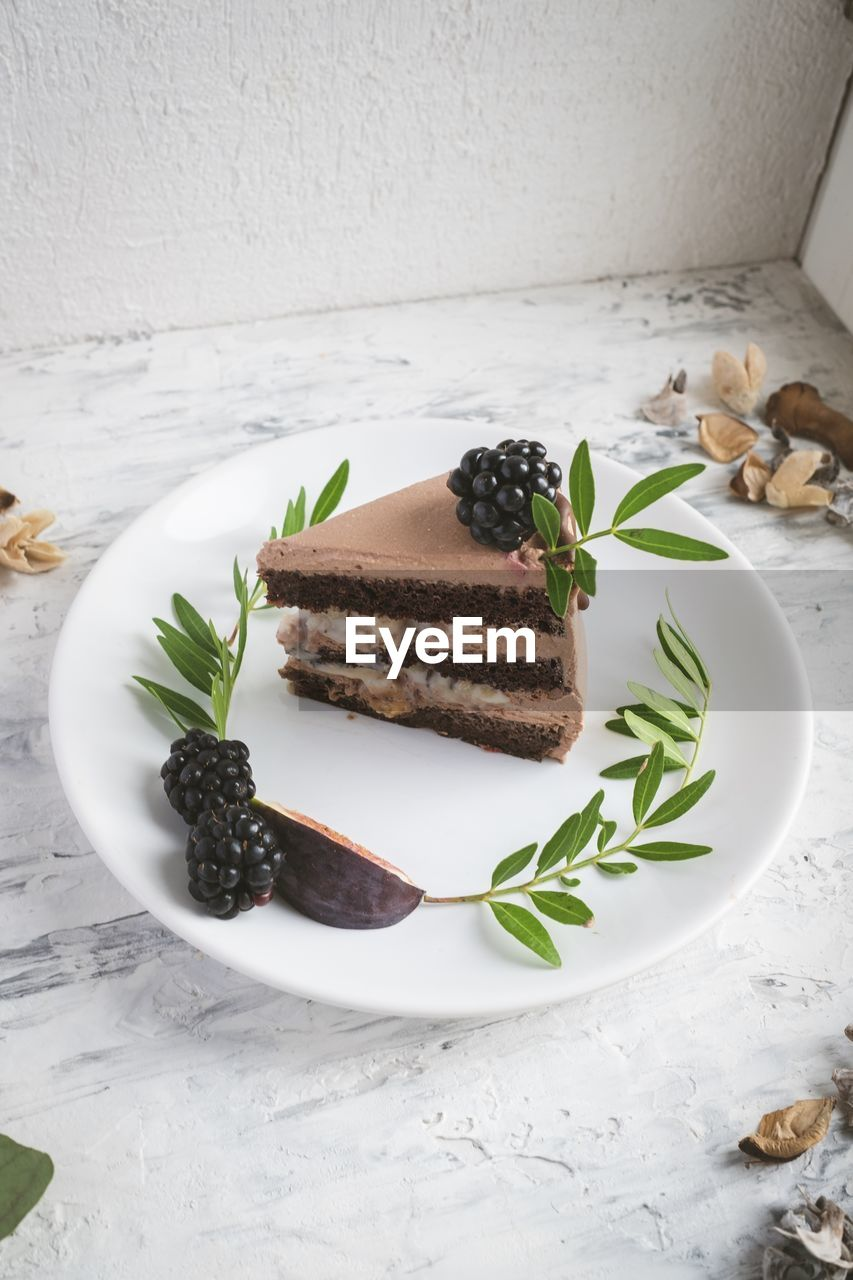 plate, food, food and drink, indoors, indulgence, still life, freshness, ready-to-eat, sweet food, sweet, dessert, table, baked, no people, temptation, cake, close-up, leaf, herb, serving size, garnish, mint leaf - culinary, food styling, snack, chocolate cake