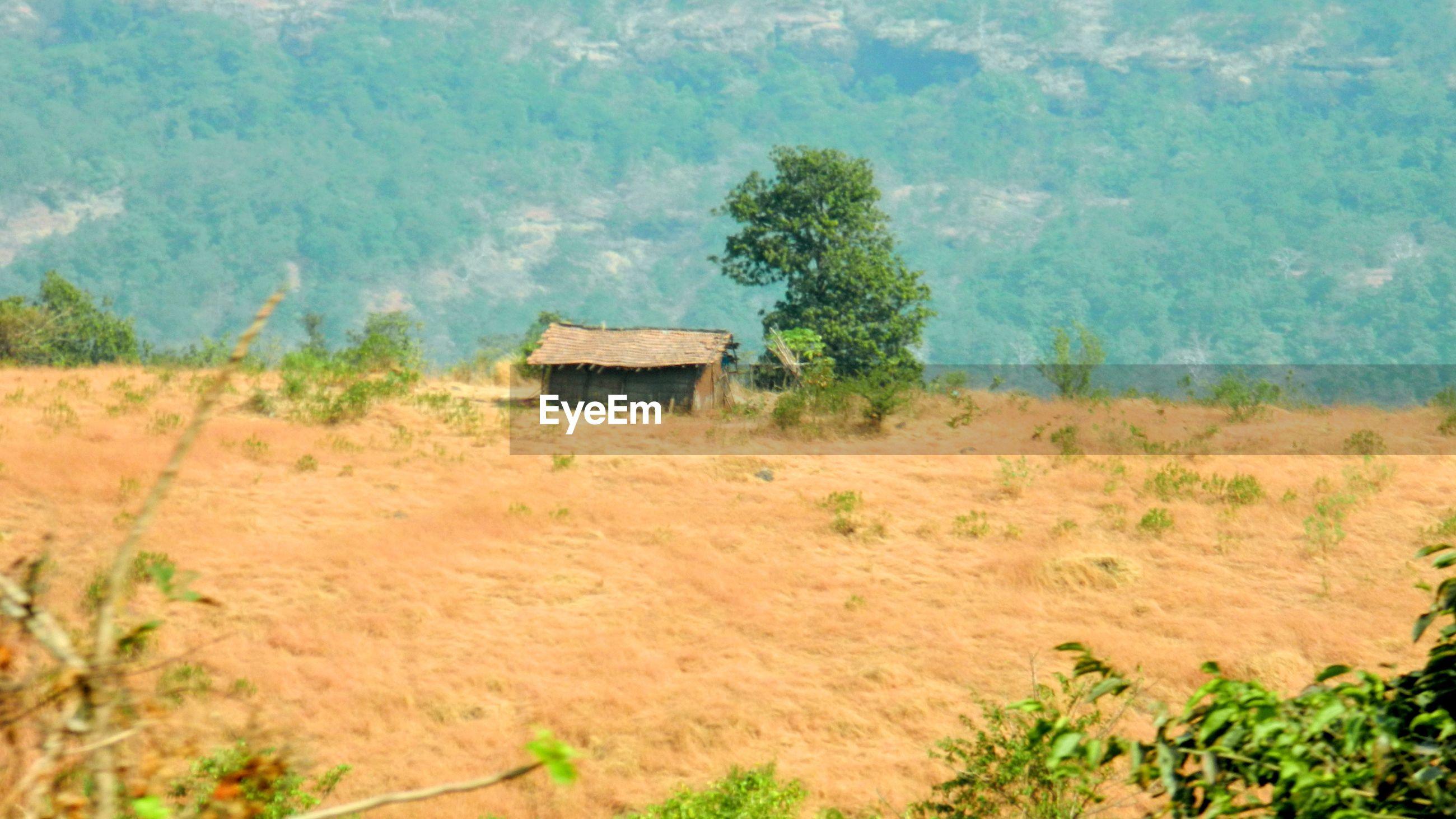 BUILT STRUCTURE ON LANDSCAPE AGAINST PLANTS