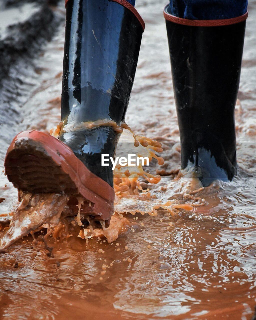 Low Section Of Person Wearing Rubber Boots Walking In Puddle