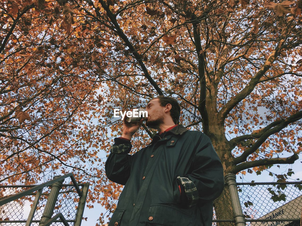 Low Angle View Of Man By Tree