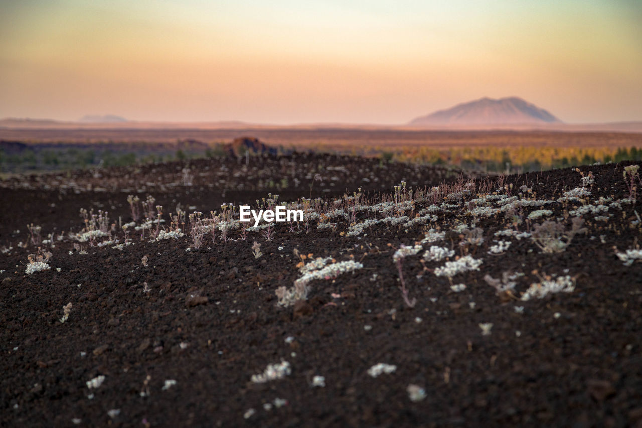 Surface level view of mountain in desert against sky during sunset