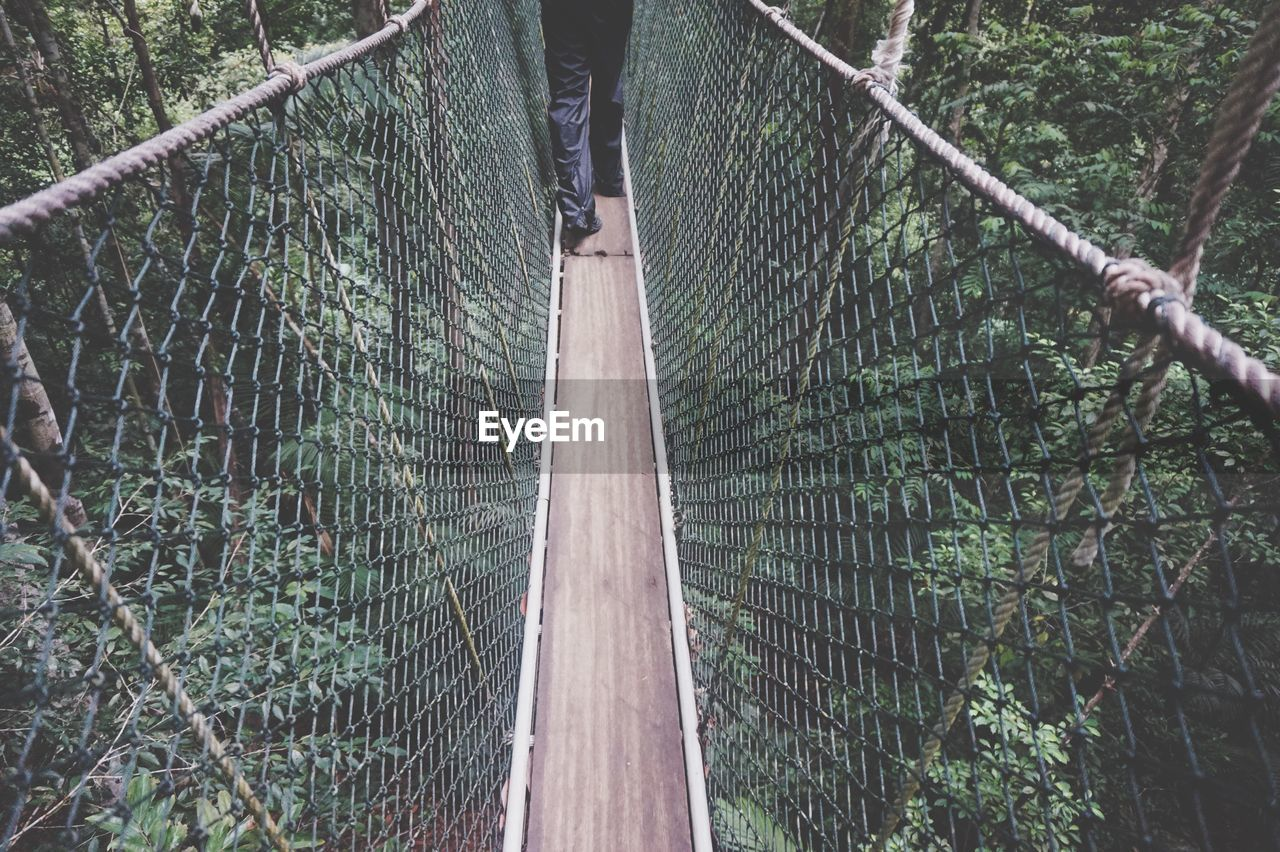 Low Section Of Person Walking On Canopy Walkway At Forest