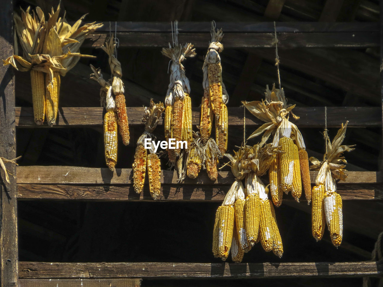 food and drink, food, no people, close-up, freshness, day, hanging, focus on foreground, plant, retail, nature, outdoors, for sale, corn, wellbeing, healthy eating, market, market stall, yellow, sweetcorn