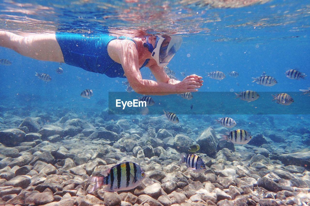 Senior Woman Swimming In Sea