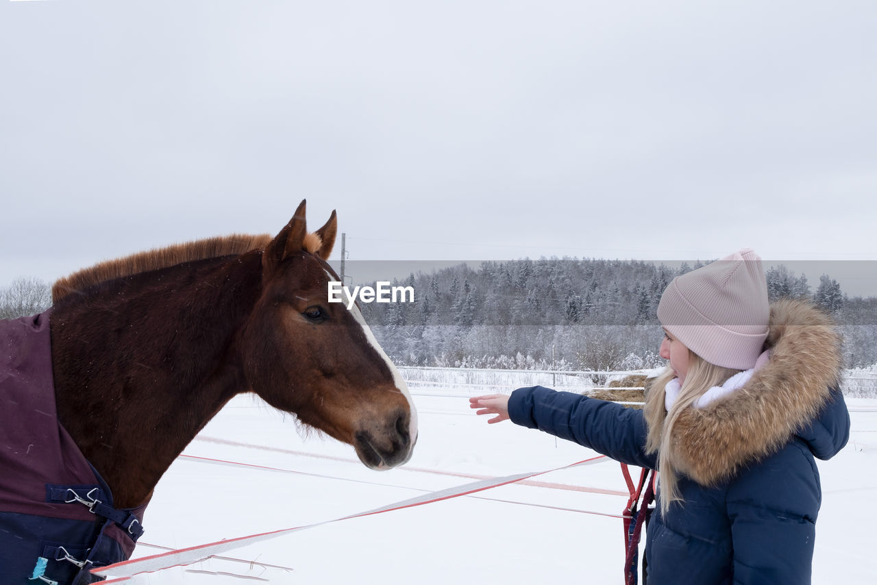 young woman in warm down jacket and pink hat stretches out her hand to  horse, which makes contact