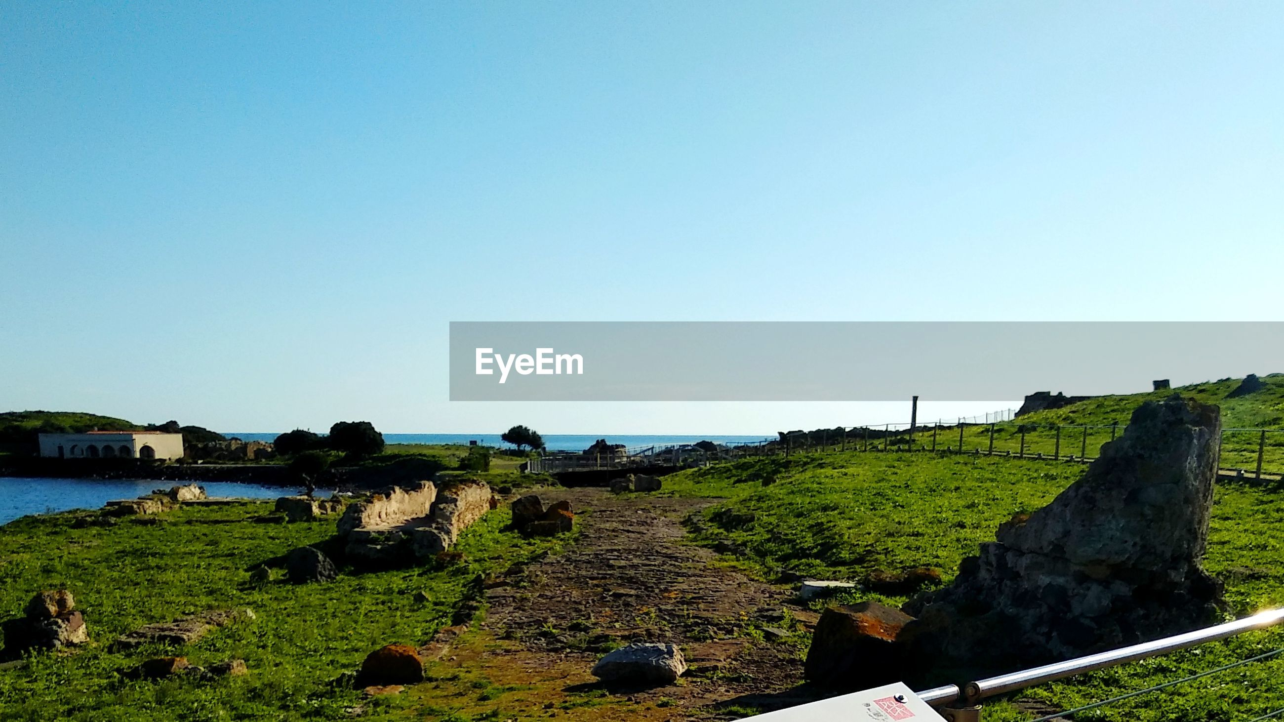 Scenic view of green land against clear blue sky